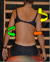 Right Thoracic left Lumbar hip correction Right